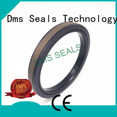 DMS Seal Manufacturer Brand hydraulic ptfe pneumatic piston seals seal