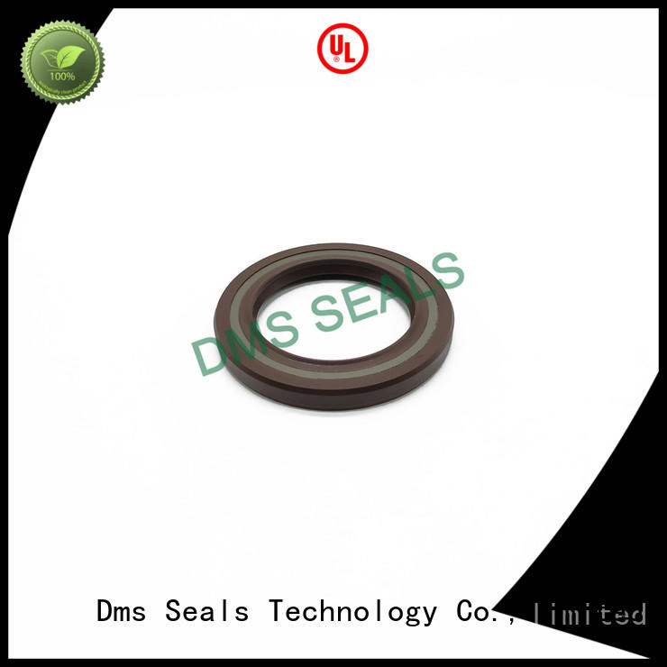 DMS Seal Manufacturer retainer oil seal with low radial forces for sale