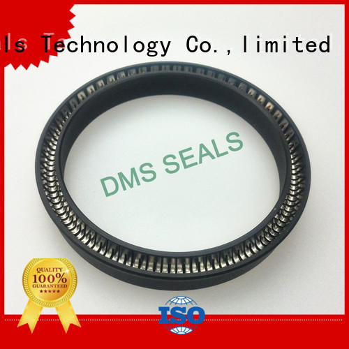 DMS Seal Manufacturer ptfe spring seals for reciprocating piston rod or piston single acting seal