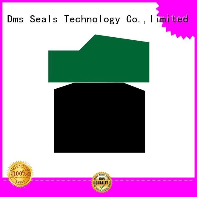 nbrfkm seal piston piston seals DMS Seal Manufacturer Brand company