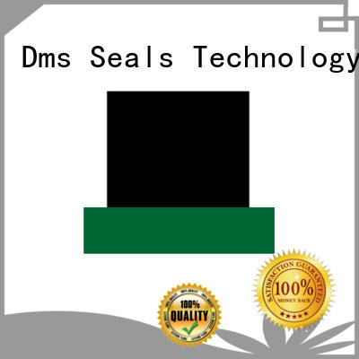 gsj push rod seal with nbr or fkm o ring for sale DMS Seal Manufacturer