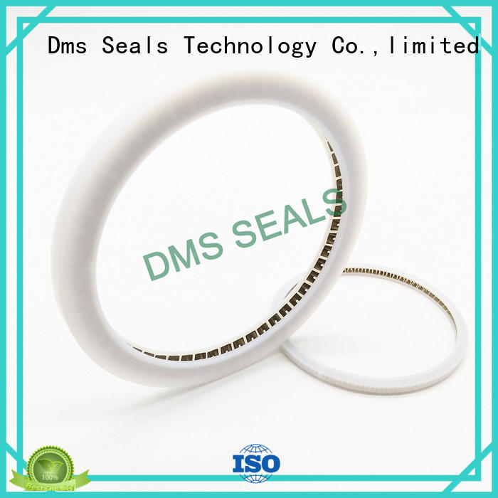 DMS Seal Manufacturer oil seal manufacturer parts for reciprocating piston rod or piston single acting seal