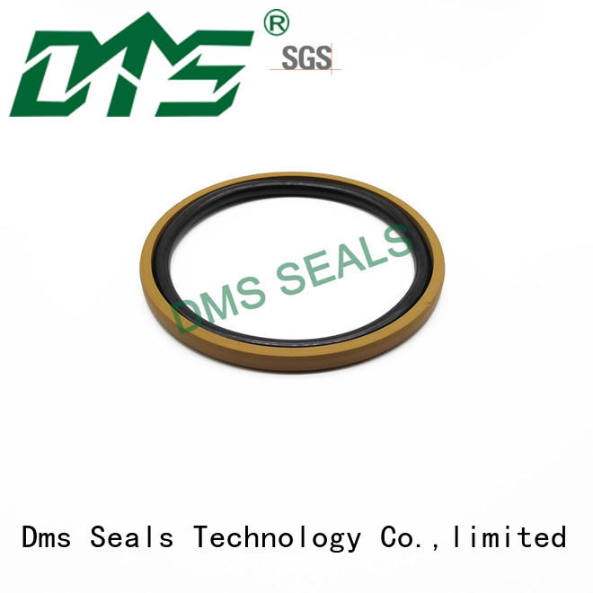 DMS Seal Manufacturer Wholesale hydraulic cylinder shaft seals with nbr or fkm o ring for light and medium hydraulic systems