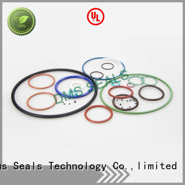 DMS Seal Manufacturer pfa o ring seal manufacturer with a diisocyanate or a polymeric isocyanate in highly aggressive chemical processing