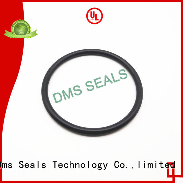 oil seal ring hot sale in highly aggressive chemical processing DMS Seal Manufacturer