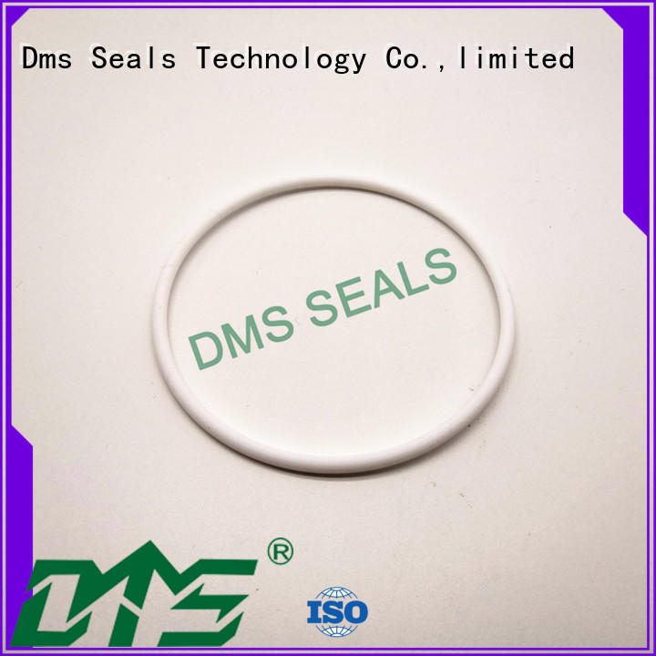 DMS Seal Manufacturer rubber round rubber ring Suppliers in highly aggressive chemical processing