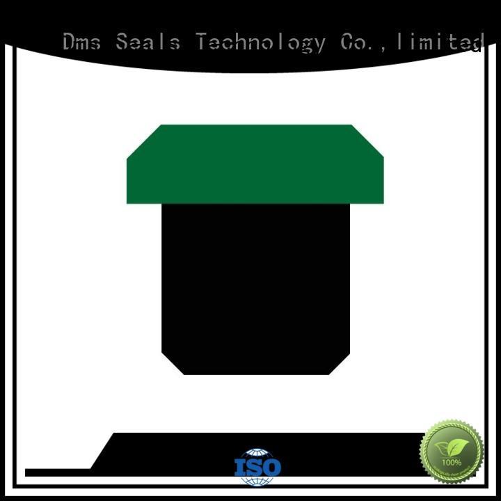DMS Seal Manufacturer Brand ptfe seal oring pneumatic piston seals nbrfkm