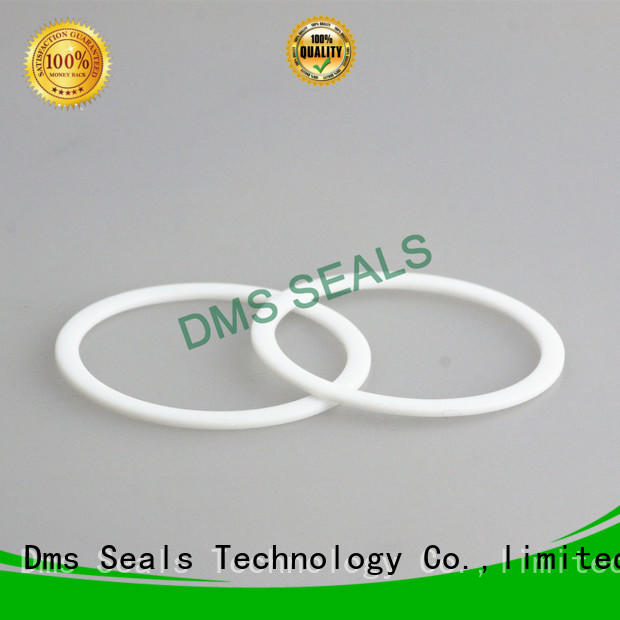DMS Seal Manufacturer value rubber elastomeric gasket for liquefied gas