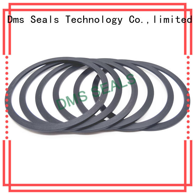 DMS Seal Manufacturer bronze filled cutting gasket material ring for liquefied gas