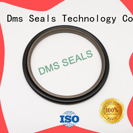 DMS Seal Manufacturer bronze filled hydraulic rod seals glyd ring for larger piston clearance