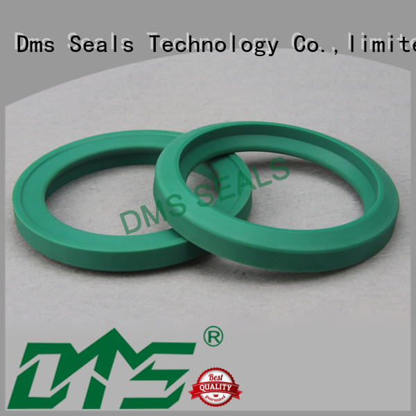 DMS Seal Manufacturer glyd ring glyd ring for larger piston clearance