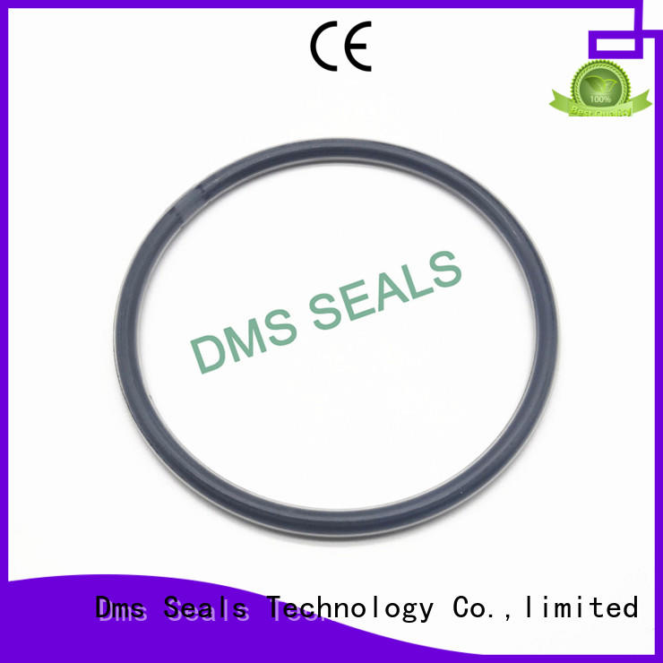 hydraulic ptfe spring OEM o-ring seal DMS Seal Manufacturer