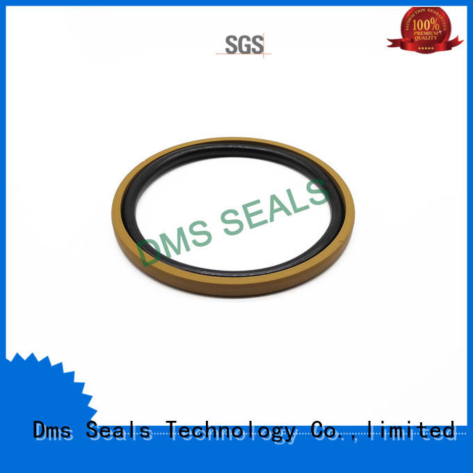 DMS Seal Manufacturer hydraulic pump oil seal factory for sale