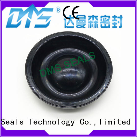 DMS Seal Manufacturer home door rubber seal with valuable elasticity for air bottle