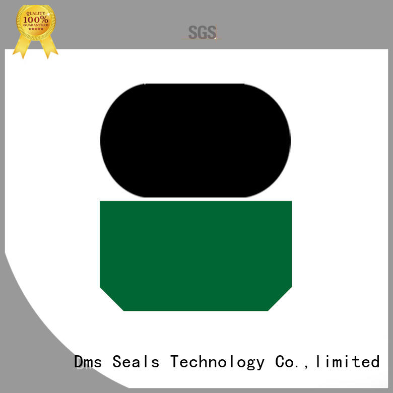 piston rod seal rod to high and low speed reciprocating DMS Seal Manufacturer