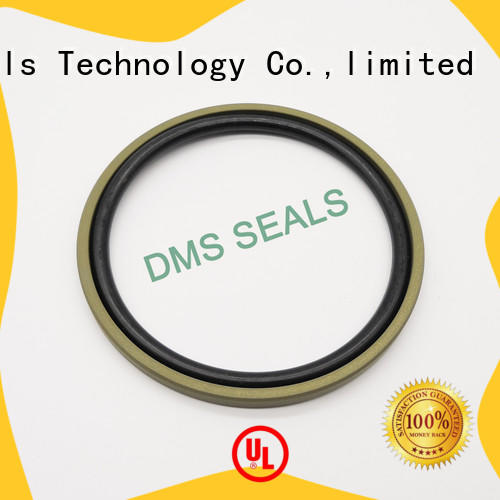 DMS Seal Manufacturer piston seals supplier for piston and hydraulic cylinder