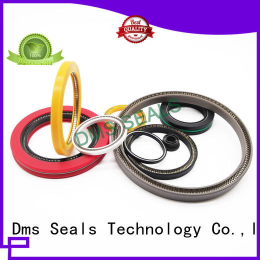 DMS Seal Manufacturer Top shaft seals for dynamic applications for reciprocating piston rod or piston single acting seal