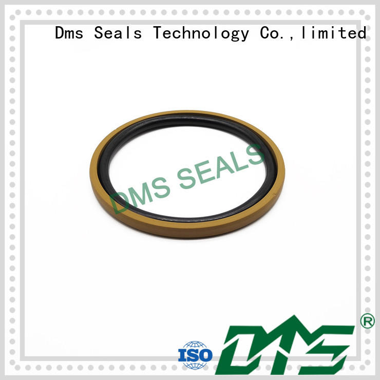 DMS Seal Manufacturer compact hydraulic piston seals glyd ring for light and medium hydraulic systems