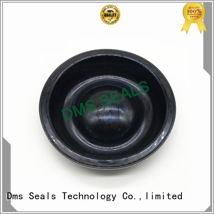 viton Rubber Seals manufacturers for leakage gap