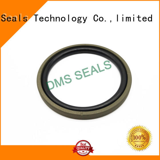 DMS Seal Manufacturer rod seals or piston seal for business for light and medium hydraulic systems