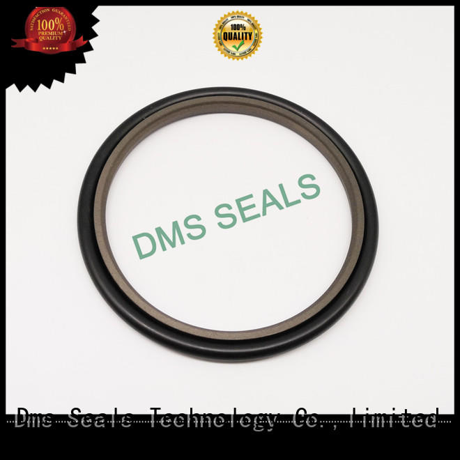 hydraulic oil seal custom for larger piston clearance DMS Seal Manufacturer