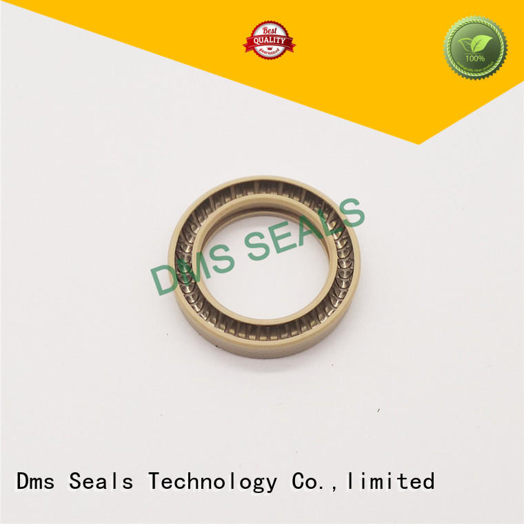 Quality DMS Seal Manufacturer Brand seal spring spring energized seals