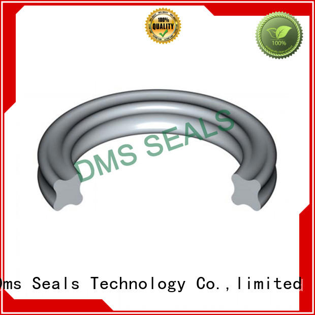 DMS Seal Manufacturer hydraulic wiper seals Suppliers in highly aggressive chemical processing