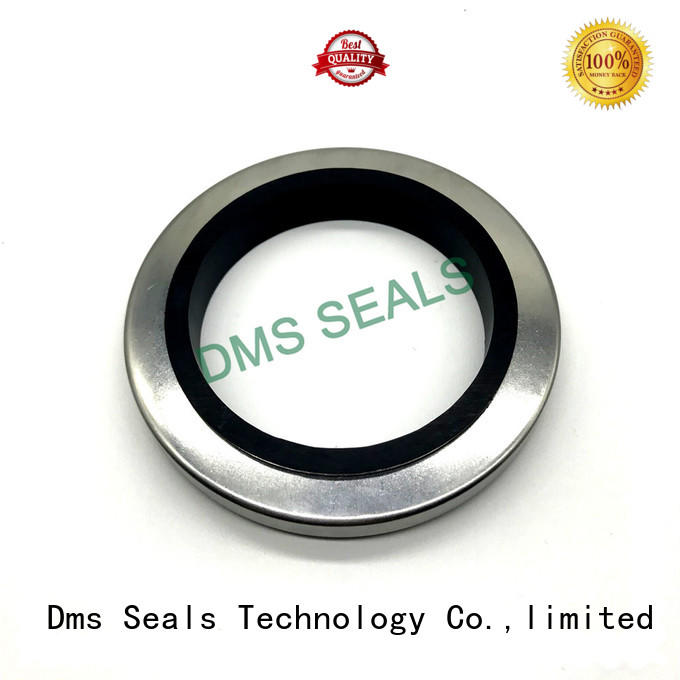 oil seal ring with low radial forces for sale DMS Seal Manufacturer