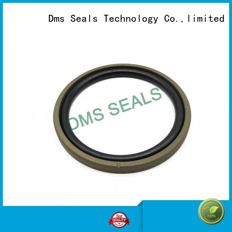 DMS Seal Manufacturer High-quality hydraulic pump oil seal manufacturers for light and medium hydraulic systems