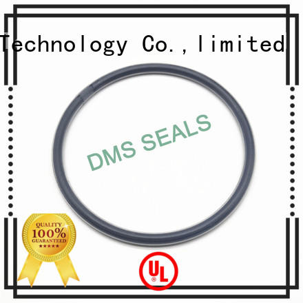 oring spring ptfe DMS Seal Manufacturer Brand oil seal ring factory