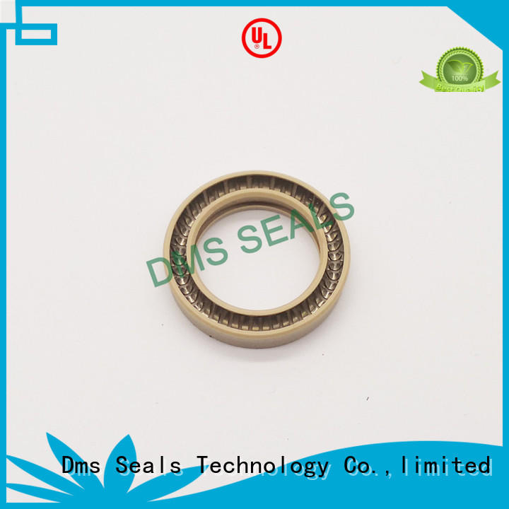 DMS Seal Manufacturer virgin spring energized seals solutions for reciprocating piston rod or piston single acting seal