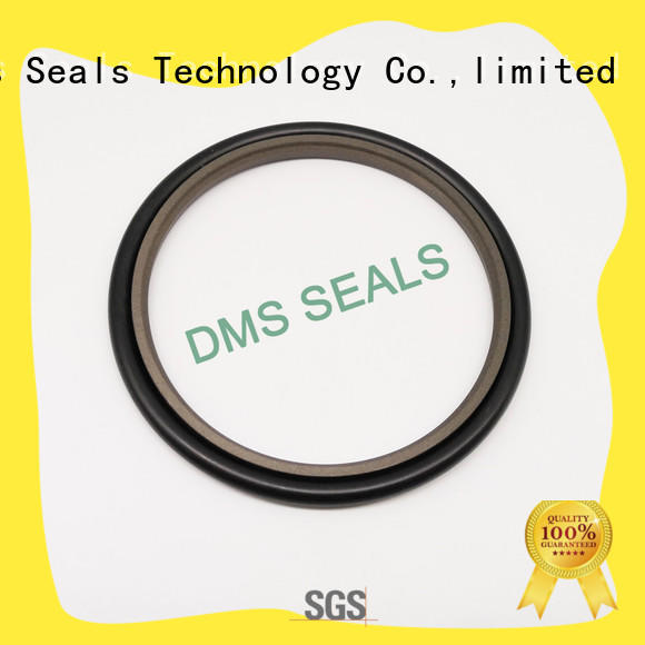 40% Bronze Filled PTFE Hydraulic Rod Seal