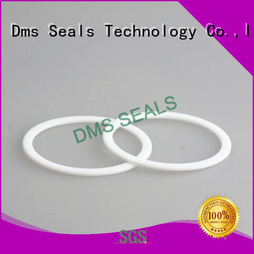 DMS Seal Manufacturer flat ptfe gasket seals for liquefied gas