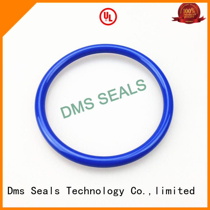 DMS Seal Manufacturer pfa o ring kit manufacturer professional in highly aggressive chemical processing