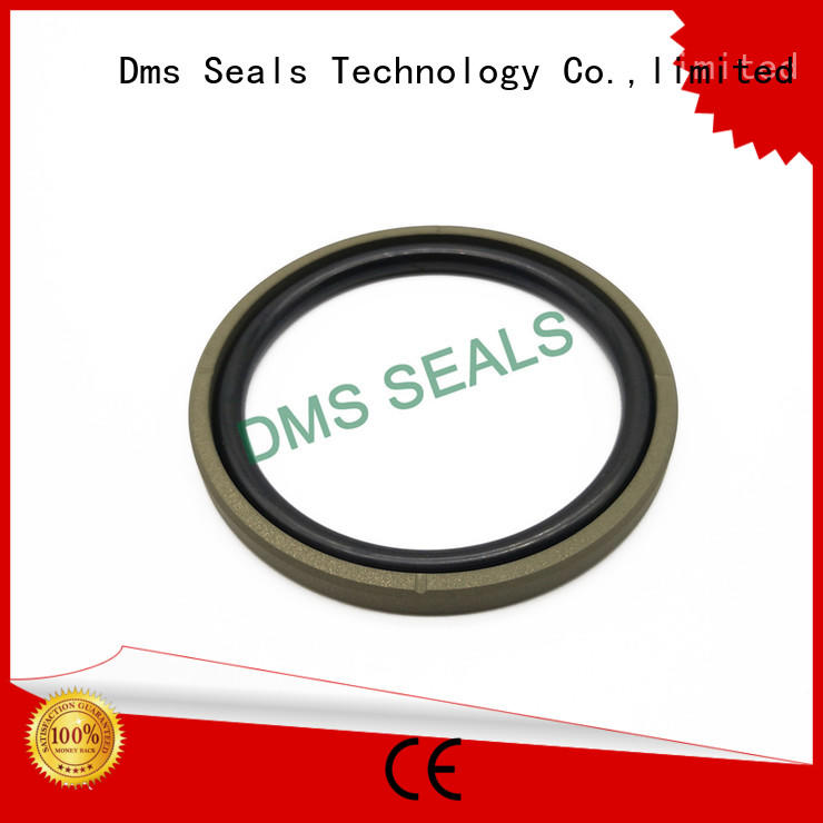 DMS Seal Manufacturer Custom piston seals manufacturers for light and medium hydraulic systems