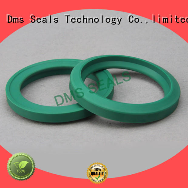 DMS Seal Manufacturer compact piston seals o ring for piston and hydraulic cylinder