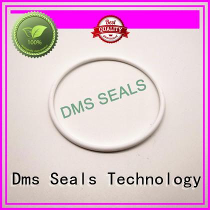 oring seal spring ptfe oil seal ring DMS Seal Manufacturer Brand