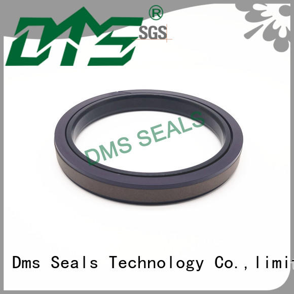 DMS Seal Manufacturer ptfe mechanical seal pump price o ring