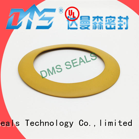 DMS Seal Manufacturer custom gaskets torque for liquefied gas