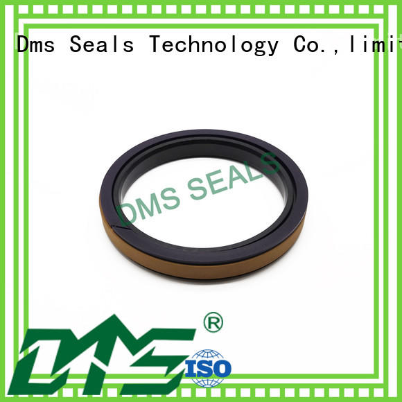 DMS Seal Manufacturer combined piston seals glyd ring for sale