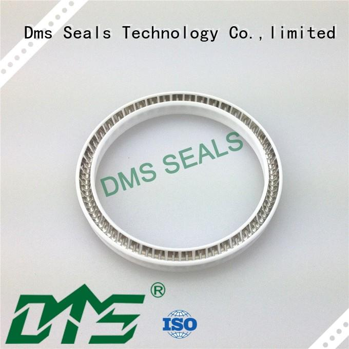 DMS Seal Manufacturer food and medicine industry spring energized seals parts for reciprocating piston rod or piston single acting seal