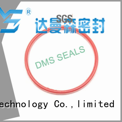 pfa o ring seal supplier online for static sealing DMS Seal Manufacturer