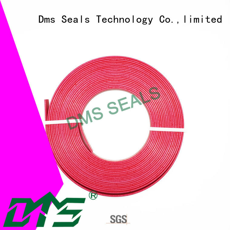 DMS Seal Manufacturer Custom rubber seal design guide strip for sale
