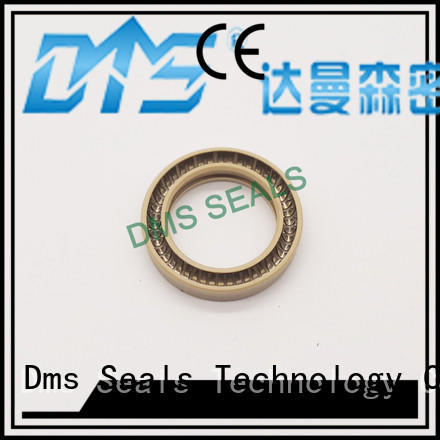 ptfe seal OEM spring energized seals DMS Seal Manufacturer