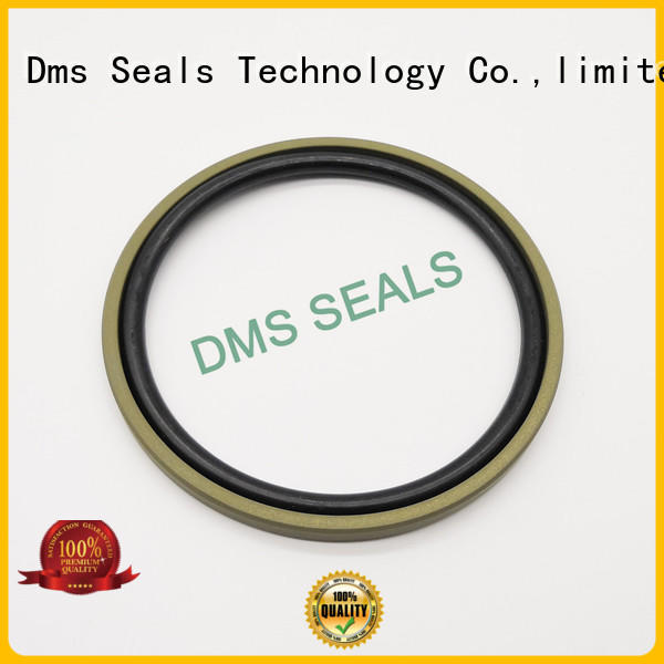 DMS Seal Manufacturer o ring seal manufacturers glyd ring