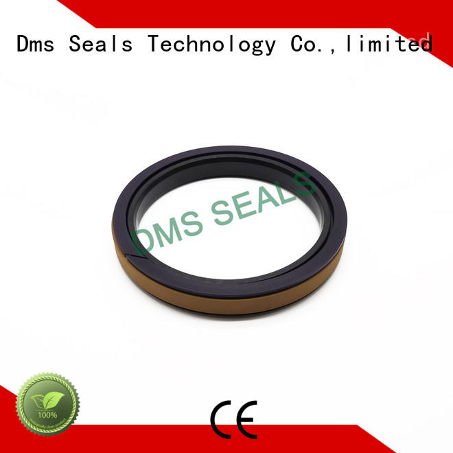 DMS Seal Manufacturer New molded seals Supply for pneumatic equipment