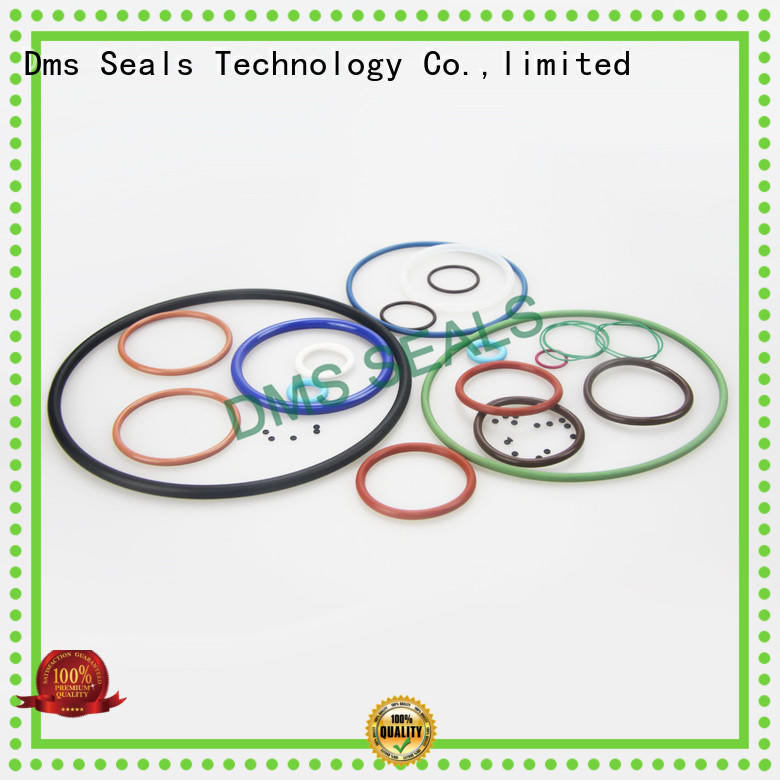 DMS Seal Manufacturer High-quality viton rubber o rings factory in highly aggressive chemical processing