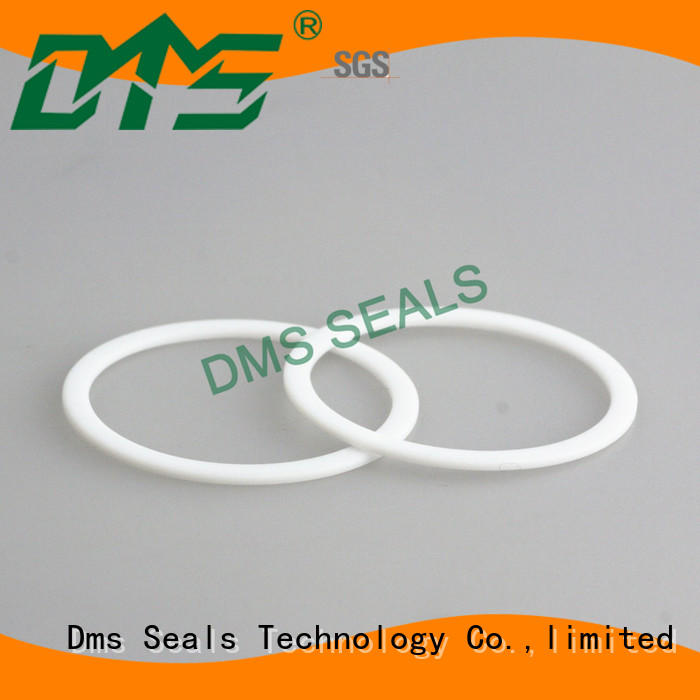 DMS Seal Manufacturer elastomeric gasket material for preventing the seal from being squeezed