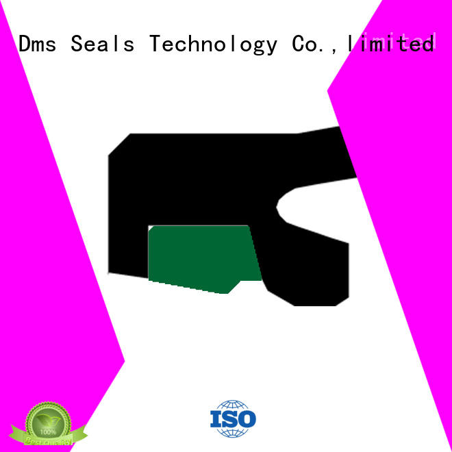 DMS Seal Manufacturer step rod seals rod reciprocating