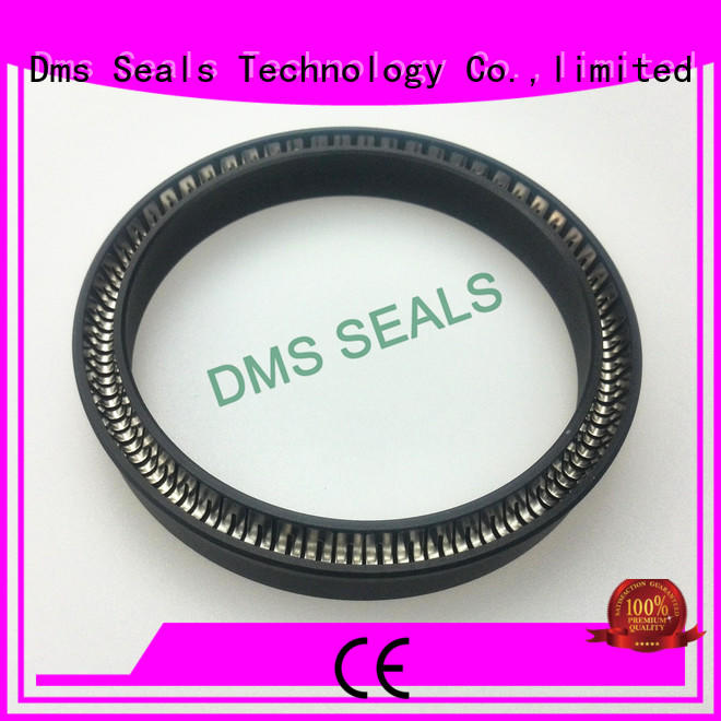 DMS Seal Manufacturer spring loaded seal for business for reciprocating piston rod or piston single acting seal